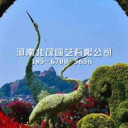河南郑州城市绿雕造型