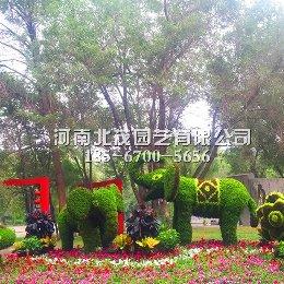 西双版纳植物绿雕大象造型