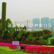 喀什植物绿雕造型