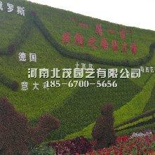 乌鲁木植物绿雕丝绸之路经济